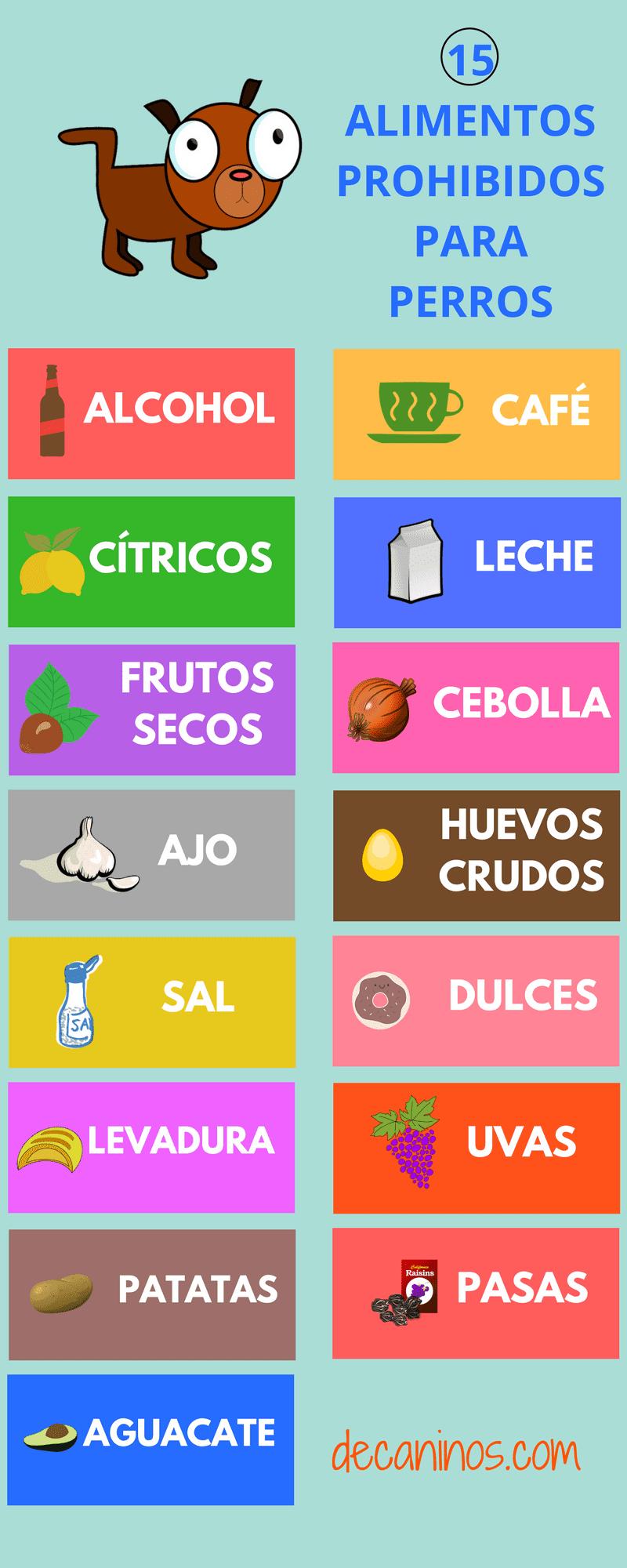 Cuidado con estos 15 alimentos prohibidos para perros - Alimentos recomendados para perros ...